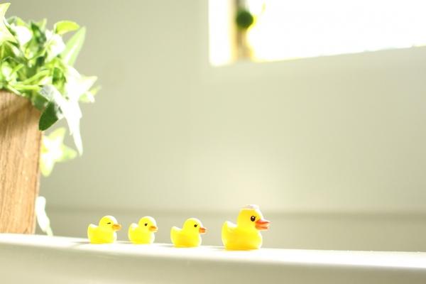 大人になってからお風呂で小用したことある?