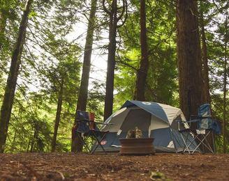 キャンプ場でアガるポイントは?