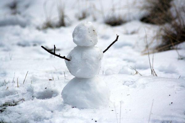 東京の人の雪への反応は大げさ!?