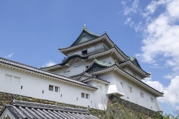 お城そびえる和歌山は情熱的な県?