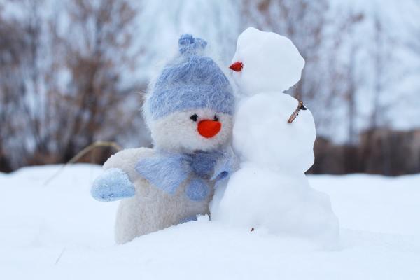 冬に引きこもる「冬季型うつ」