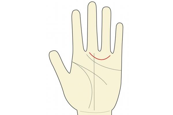 人差し指と薬指の付け根に半弧を描いている線が金星線。