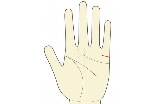 結婚線が内側に長く伸びている人は体の繋がりをそこまで重視しないそうです。
